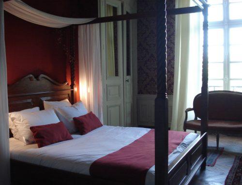 chateau chambre Léonard de Vinci